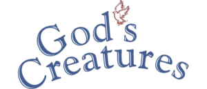 RICH REVIEWS: God's Creatures A Biblical View of Animals