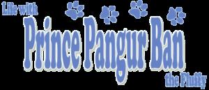 Prince Pangur Ban the Fluffy: 2017 ReFluffed Edition!