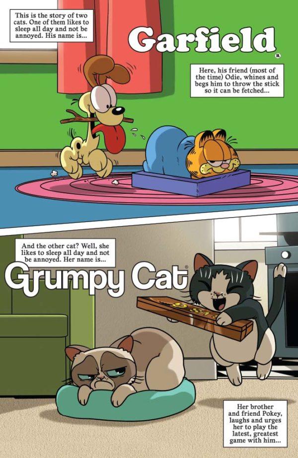 Grumpy Cat Garfield 1 Preview First Comics News