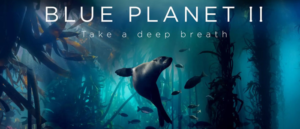 RICH REVIEWS: PLANET EARTH: BLUE PLANET II One Ocean