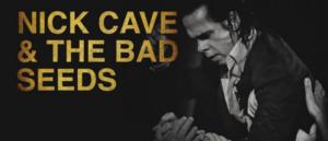 NICK CAVE & THE BAD SEEDS; AN ART BOOK
