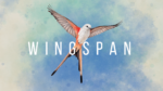 Wingspan – a relaxing, award-winning strategy card game out now for XBox